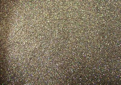 Metallic Polyester Cut Custom Car Bike Paint HOLOGRAPHIC SILVER Metal Flake 50g