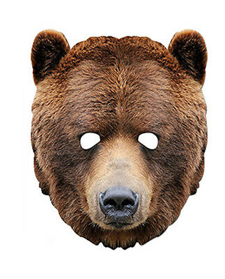 Bear Animal 2D Card Party Face Mask Fancy Dress Up Zoo theme