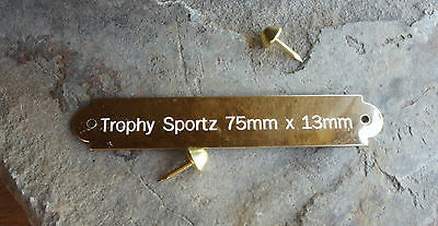 75mm x 13mm,SOLID BRASS PLATES,WITH BRASS PLATED DOMED NAILS ,CUSTOM ENGRAVING
