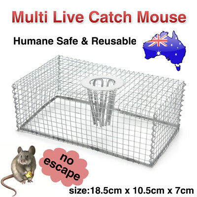 Multi Catch Humane Live Mouse Mice Trap Cage Control Bait Galvanised Mesh Wire