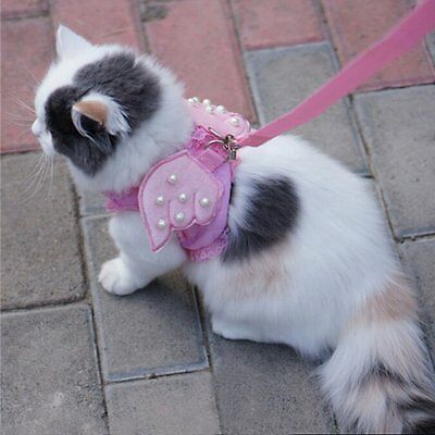 Adorable Cat & Dog Pet Safety Walking Vest Harness Matching Lead Leash Costume