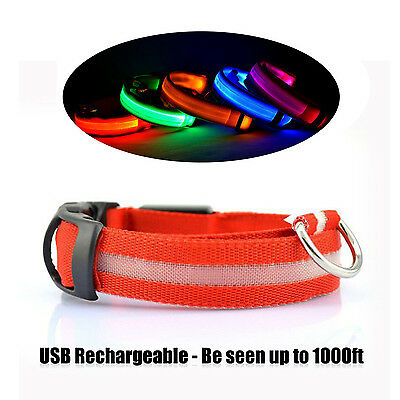 UK USB Rechargable LED Dog Pet Collar Flashing Luminous Safety Light Up Nylon