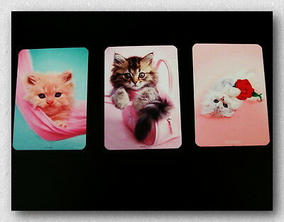Set Of Three Refrigerator Magnets - The Pink Kitties - Too Cute For Words