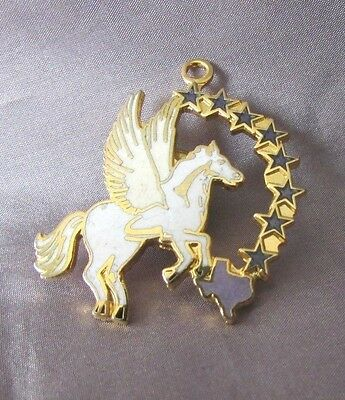 "Vintage  Pegasus And Texas State 15"" Necklace Pendant Lapen Pin Jewelry"