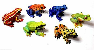 Hand Painted Set Of 6  Frogs In Various Different Colors  With Realistic Eyes