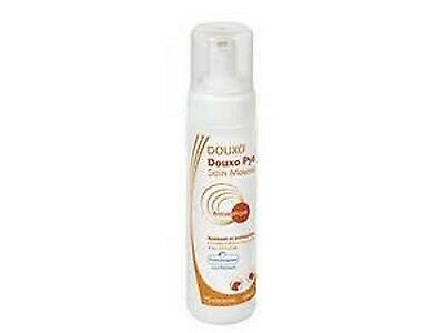Douxo Pyo Foam Mousse 200ml Cats And Dogs, Premium Service, Fast Dispatch