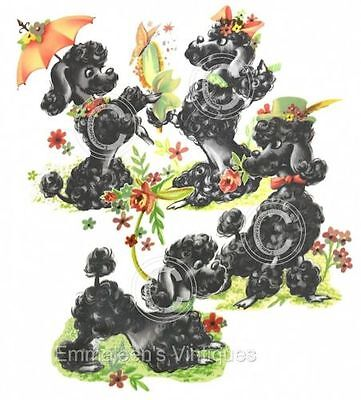 Vintage Image Shabby Retro Black Poodle Set Dogs Waterslide Decals AN715