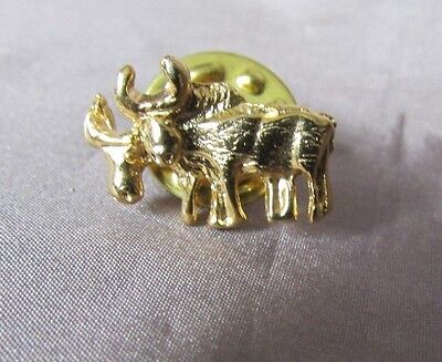 Oxen Pair Gold Tone   1/4 X  1/2  Lapel Pin