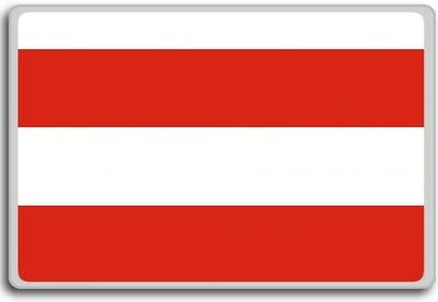 Czech Republic, Brno city flag fridge magnet