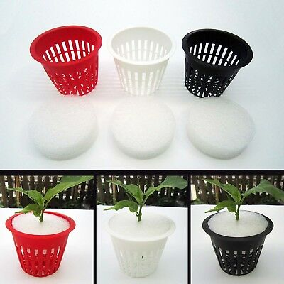 "10X Heavy Duty Mesh Pot Net Basket 3""+ Clone Collar Insert Root Guard Hydroponic"