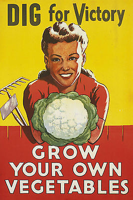 2W85 Vintage WWII War Victory Garden Grow Your Own WW2 Poster A2 A3 A4