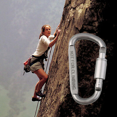 Camping Outdoor Aluminum D-Ring Screw Locking Carabiner Hook Clip Key Chain IM