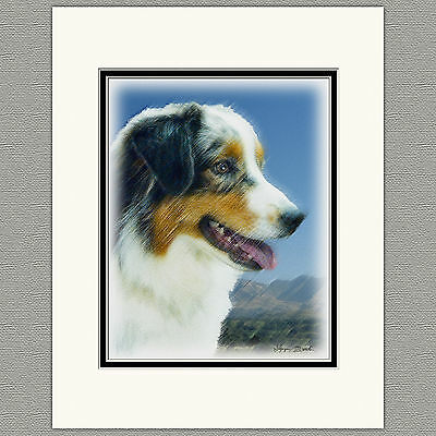 Australian Shepherd Original Art Print 8x10 Matted to 11x14