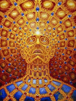 "Alex Grey Art Silk Cloth Poster 32 x 24"" Decor 02"