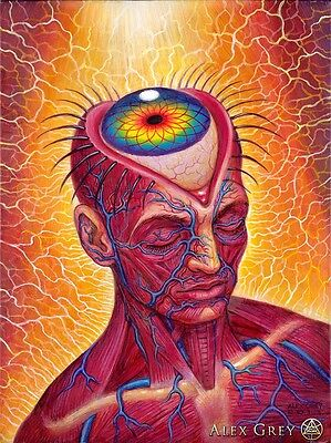 "Alex Grey Art Silk Cloth Poster 32 x 24"" Decor 10"