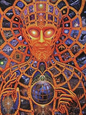 "Alex Grey Art Silk Cloth Poster 32 x 24"" Decor 07"