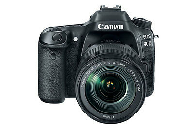 Canon EOS 80D EF-S 18-135mm f/3.5 Kit USA