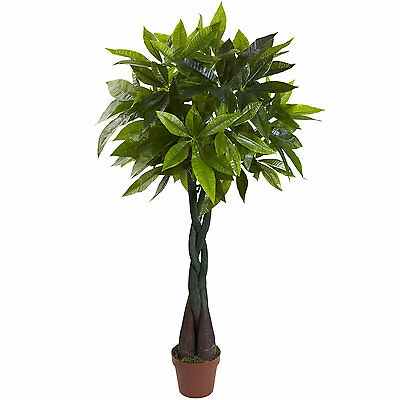4' Money Plant (Real Touch) Indoor Plants Office Plants Silk Plants