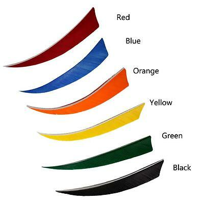 """5"""" Shield RW Turkey Feather Arrows Fletching 6 Color For Archery Hunting Fitness"""
