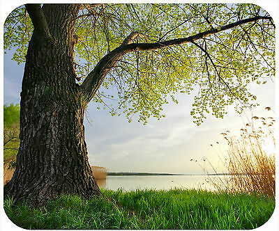Mouse Pad Custom Personalized Thick Mousepad-Tree With Lake-Any Text Free