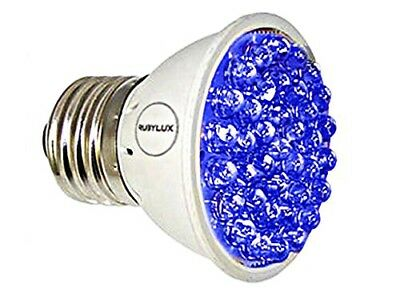 Genuine New RubyLux ALL BLUE LED Bulb - Size Small