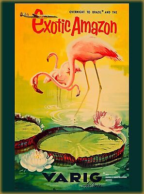Brazil Flamingo Birds by Airplane South America Travel Advertisement Art Poster