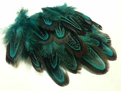 20 Aqua Blue Dyed Almond Pheasant Feathers DIY Craft Millinery Fly Fishing