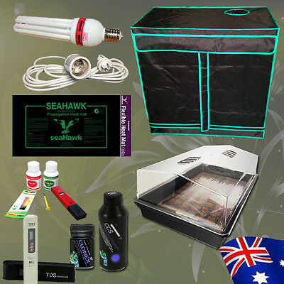 77 Cell Cocopeat Dome Grow Room CFL Lamp TDS Meter Heat Mat Seedling Cloning Kit