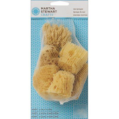 Martha Stewart Crafts 32228 Sea Sponges Plaid Paint Art Stencil NEW!