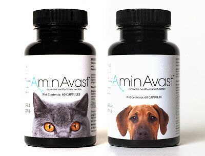 Aminavast Kidney Support for Cats/Dogs, 60 Capsules, Brand New UK stock