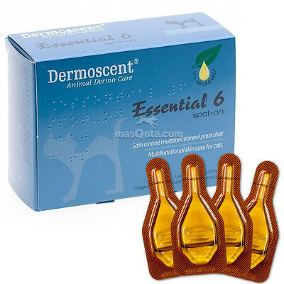 Dermoscent Essential 6 Spot-On - Chats / Chats - 4 Pipettes