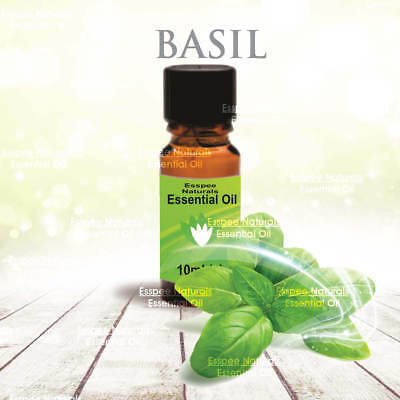Basil Essential Oil 10ml - 100% Pure - For Aromatherapy & Home Fragrance