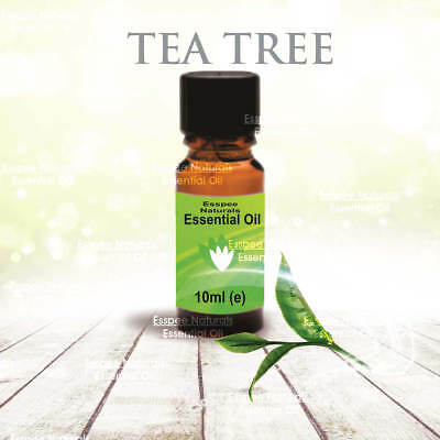 Tea Tree Essential Oil 10ml - 100% Pure - For Aromatherapy & Home Fragrance