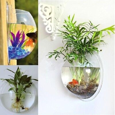 Fish Wall Mount Hanging Bowl Aquarium Goldfish Tank Plant Decoration Bubble Pot
