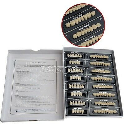 GER 1 Set New Pro Dental Clinic Synthetic Resin Teeth T6-A2