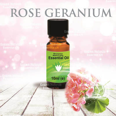 Rose Geranium Essential Oil 10ml - 100% Pure - For Aromatherapy & Home Fragrance