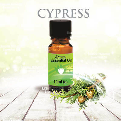 Cypress Essential Oil 10ml - 100% Pure - For Aromatherapy & Home Fragrance