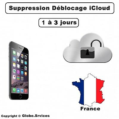 Check iCloud info - iPhone iCloud Vérification Status FMI Clean / Lost / Stolen