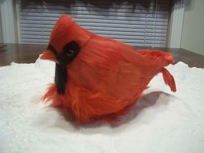 "Bright Red Feathers Cardinal Bird with Clip on Underside - 7"" long by 4"""