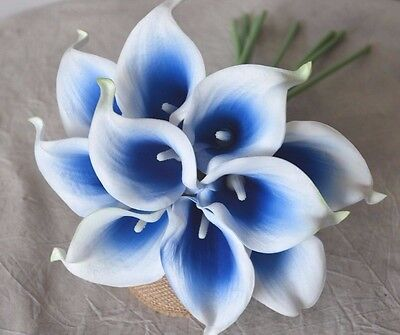 10 Royal Blue Picasso Calla Lilies Real Touch Wedding Flowers Centerpieces