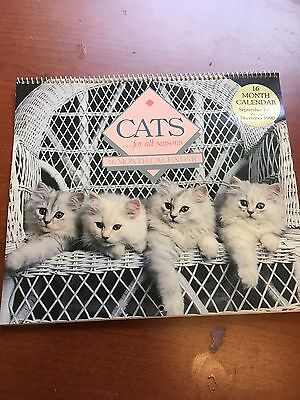 Cats ... For all Seasons 16 month calendar September 1989 - December 1990 Kitty