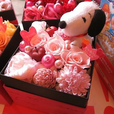 Peanuts Snoopy Boxed Preserved Flower Gift Interior Present Japan New Free