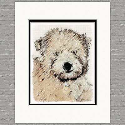 Soft Coated Wheaten Terrier Portrait Original Print 8x10 Matted to 11x14
