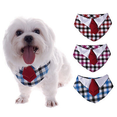 Adjustable Pet Dog Cat Triangular Bandage Scarf Bandana With Collar Neckerchief