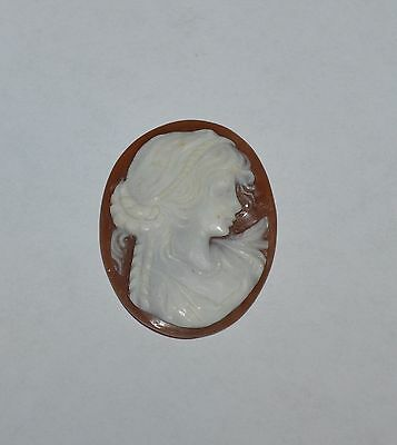Vintage Antique Carved Shell Cameo