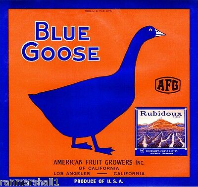 Riverside Blue Goose Mt. Rubidoux #3 Orange Citrus Fruit Crate Label Art Print