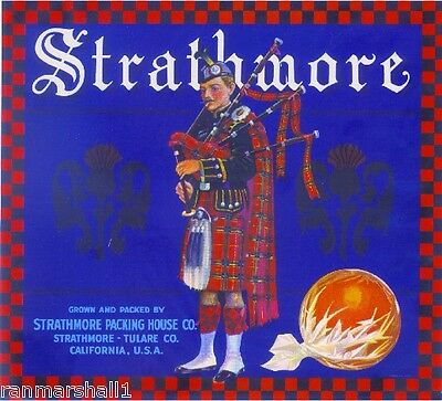 Strathmore Scottish Man Bagpipes #2 Orange Citrus Fruit Crate Label Print