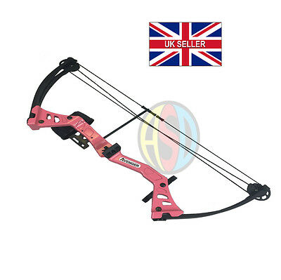ASD Pink Avenger Kids / Child Archery Compound Bow Set With Arrows and Armguard