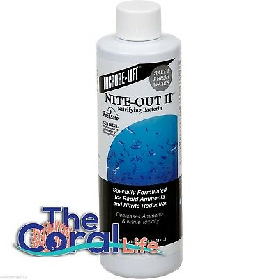 Microbe-Lift Nite-Out II Nitrifying Bacteria (8oz) - FREE USA SHIPPING!