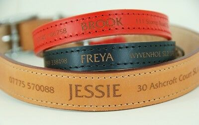 Dog Tag not required - Personalised Leather Dog Collar 3 colours Laser Engraved
